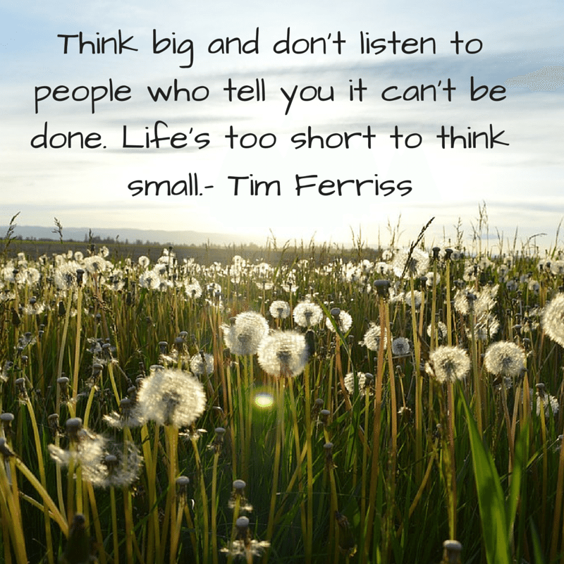 "awesome quote by Tim Ferris over image featuring a field of daisies, ""think big"""